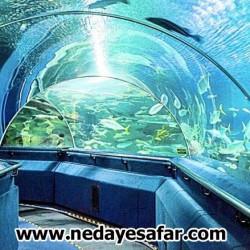 دنیای زیر آب پاتایا، جاذبه های گردشگری پاتایا ، تایلند پاتایا