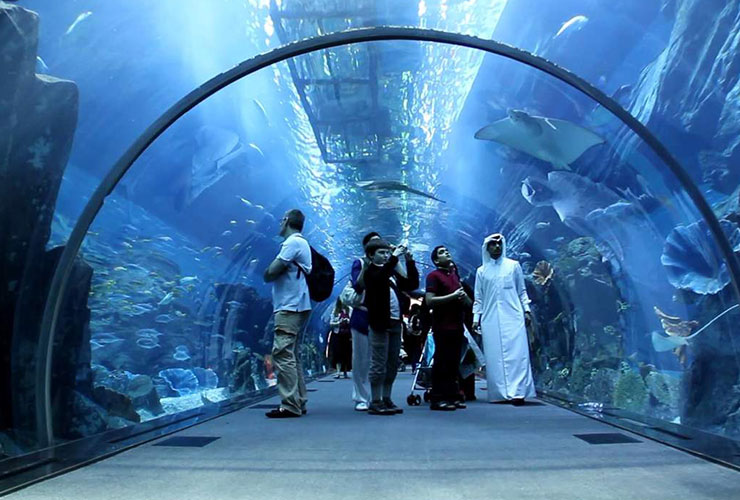dubai-aquariumand